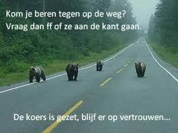 Als je beren ziet betekend dat actie ondernemen. Doe wat met de beren. Zorg dat ze niet voor je voeten gaan lopen. Zonde van je tijd. ;-)