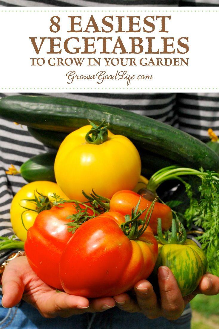 8 Easiest Vegetables To Grow In Your Garden Easy 400 x 300