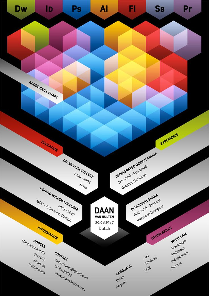 Graphic - Love this Creative Designer Resume