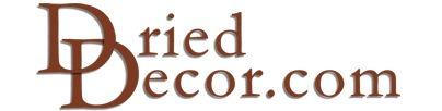 Dried Decor.comDry Decorcom