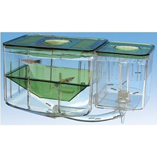 Aquarium betta tank nursery breeding tank divider system for Fish breeding tank