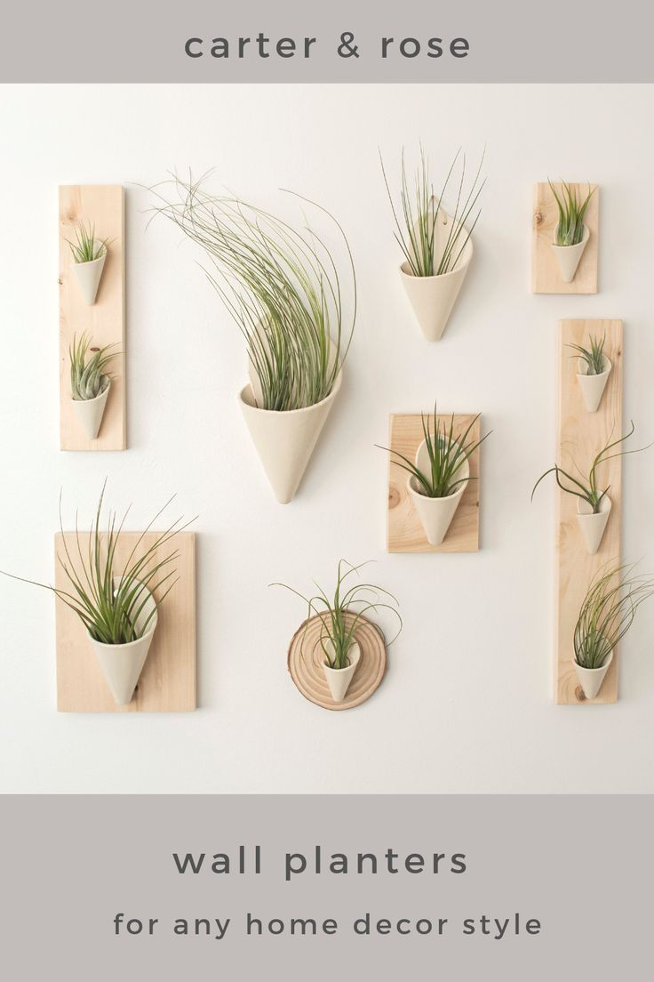 Ceramic Wall Planters Are A Great Way To Display Plants And Elevate Your Home Decor Air Plants Are Low In 2020 Ceramic Wall Planters Wall Planter Wall Planters Indoor
