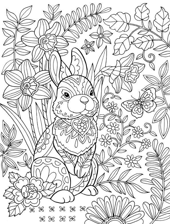 Pin by Katie C on Adult Coloring | Bunny coloring pages ...
