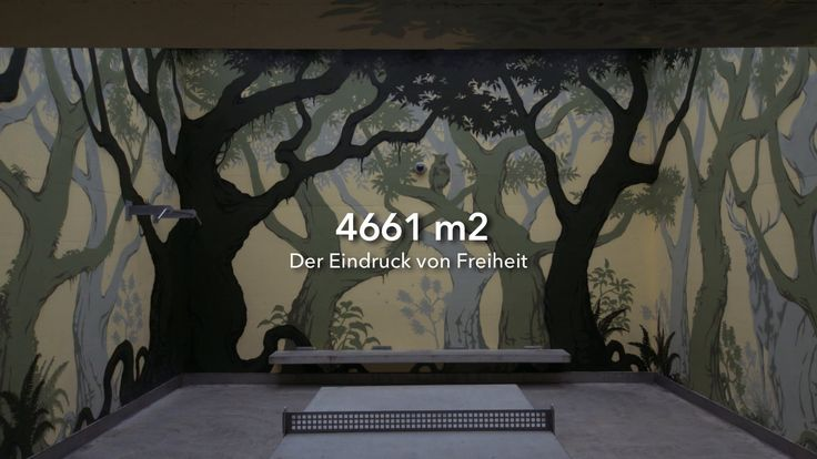 4661m2 - The impression of freedom