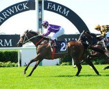 Liverpool City Council Chipping Norton Stakes Day | Events in Sydney Don't miss the action
