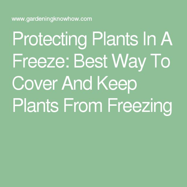 how to keep def from freezing