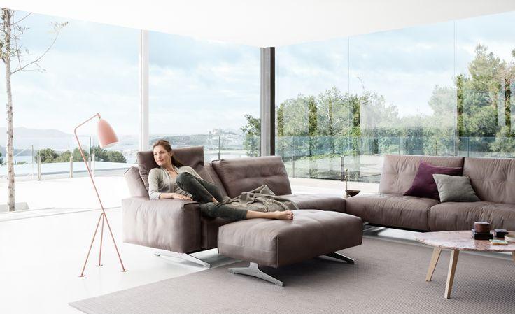 NEW Rolf Benz 50 sofa line!   Rolf Benz Studio, Boston, MA