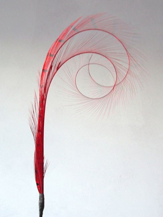 Millinery Feathers  Double burnt curled by simplysilverbyheena, $8.50
