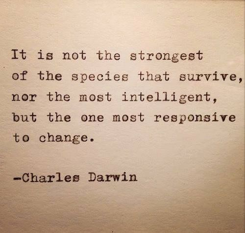 """it is not the strongest of the species that survive, nor the most intelligent, but the one most responsive to change. -Charles Darwin. Inspiration 