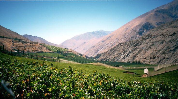 Elqui Valley, Chile 1026-0303241327valle-elqui.jpg 1,042×582 pixels