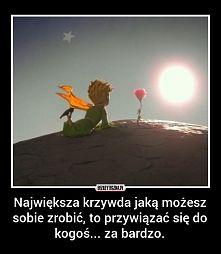 Zobacz zdjęcie ...