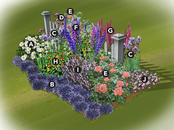 Colorful Cottage Garden Plan;    Traditional cottage gardens often use a picket fence as a backdrop, but you can also use a wall or evergreen hedge. The idea is to create a backdrop to highlight the lovely flowers. The bed measures approximately 8'x4' and should be placed in full sun.