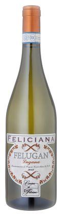 "Lugana, ""Felugan"", Feliciana - 2012 - Wein | NAVINUM"