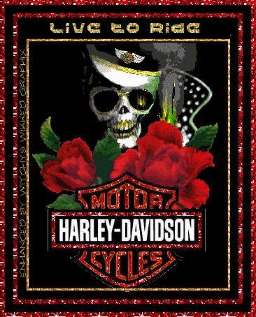 Harley-Davidson Glitter Graphics | live to ride harley davidson