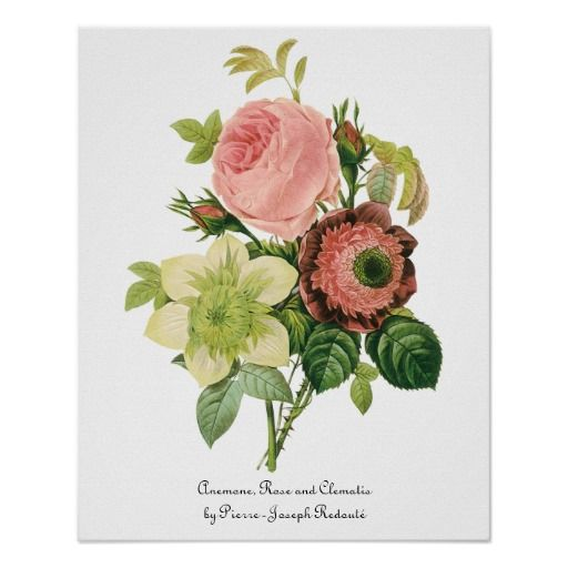 Vintage Bloemen, de Clematissen van de Rozen van Poster