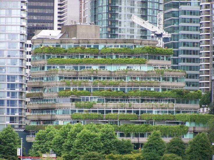 I benefici derivanti dai tetti verdi | EcoProspettive