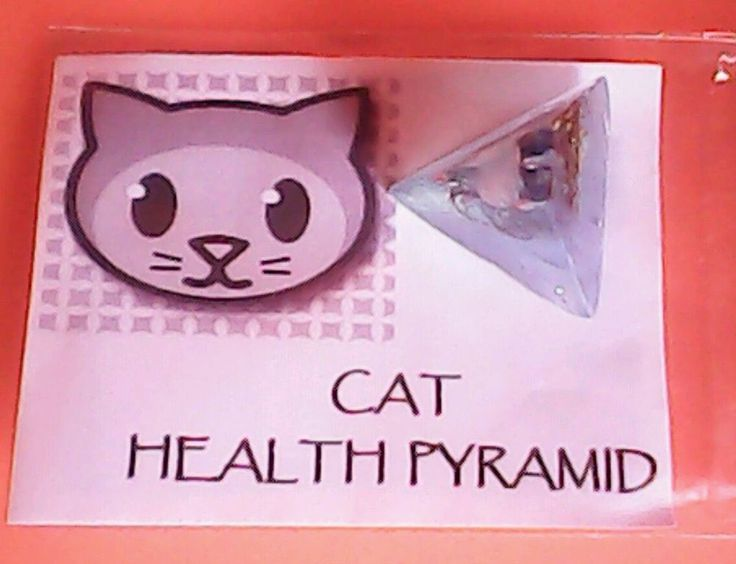 Orgonite Cats Protection Pyramid For Health Blue