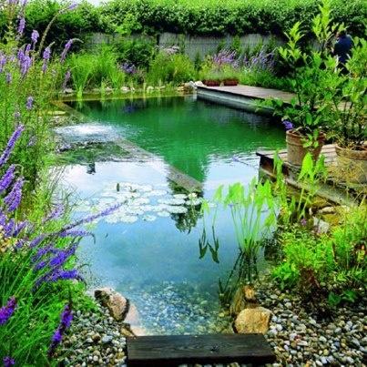 Mejores 81 im genes de pool designs en pinterest for Piscinas naturales hornillo