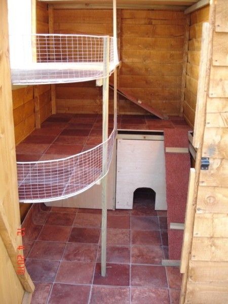 Loving the different levels inside a shed and the balcony cos we all knows rabbits loves to perch!