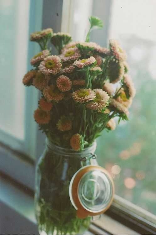 Flowers in a jar. Haven't seen those flowers before, very cute and vintage