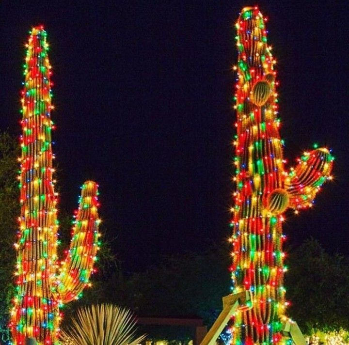 Pin By Nat Deaner On Arizona Christmas Decorations Christmas