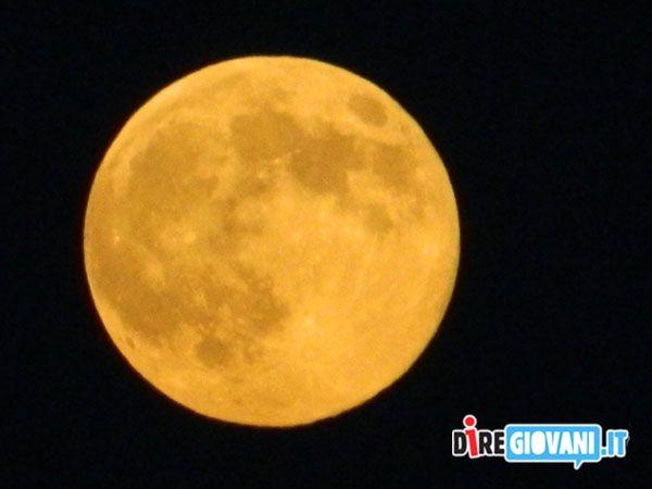 Titolo: Luna Piena  Nome dell'Autore: Nicholas Lobianco