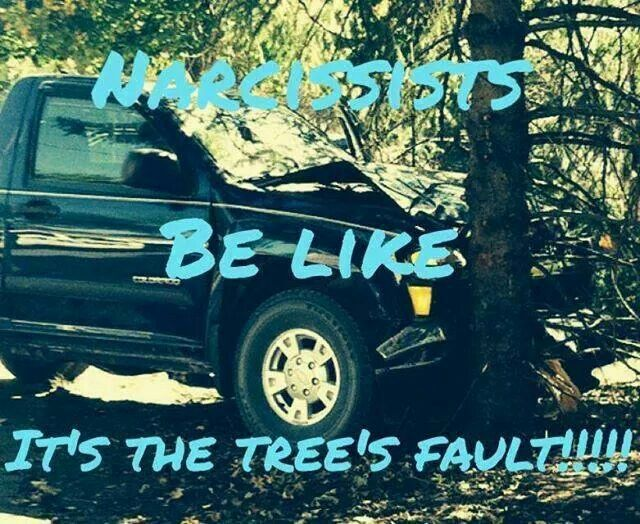 Haha, it's the tree's fault.  Not mine.  Nope.  It's never my fault!