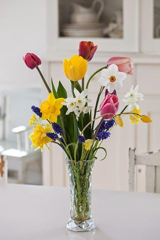 Foto: Mari Eriksson     En vårbukett till er från mig! Jag plockade den i morse. Tulpanerna blommar som galna nu och jag njuter i s...