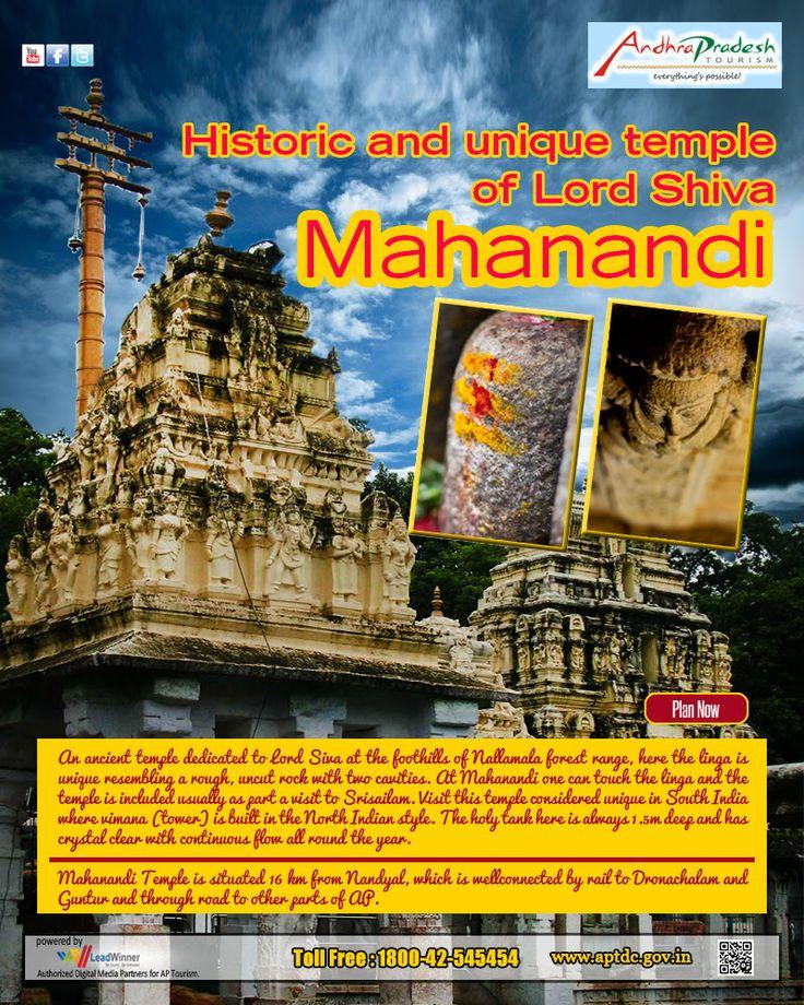 APTDC Haritha Hotel - Mahanandi - Andhra Pradesh
