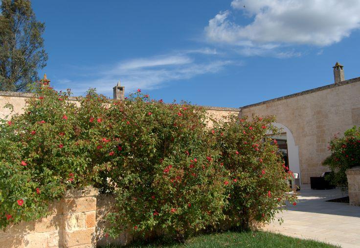 External of Masseria #masseria #countryresort #puglia #masseriacordadilana