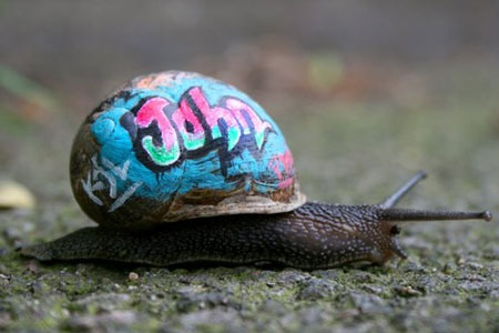 A London artist, Slinkachu, used molluscs' shells for 'Inner City Snail – a slow-moving street art project'.