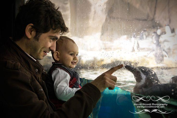 foto bambino acquario genova - fotografo famiglie rozzano acquariovillage - acquario village - fotografo bambini milano lifestyle family famiglia bambini bambino baby acquario di genova