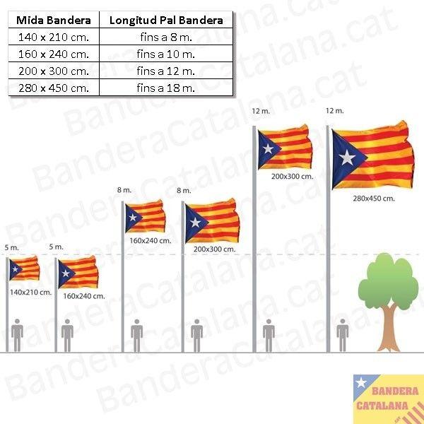 quadre mides bandera senyera estelada pal mastil masteler llargada proporció dibuix diagrama
