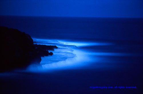 石川賢治「月光浴」 - 月光写真展示室