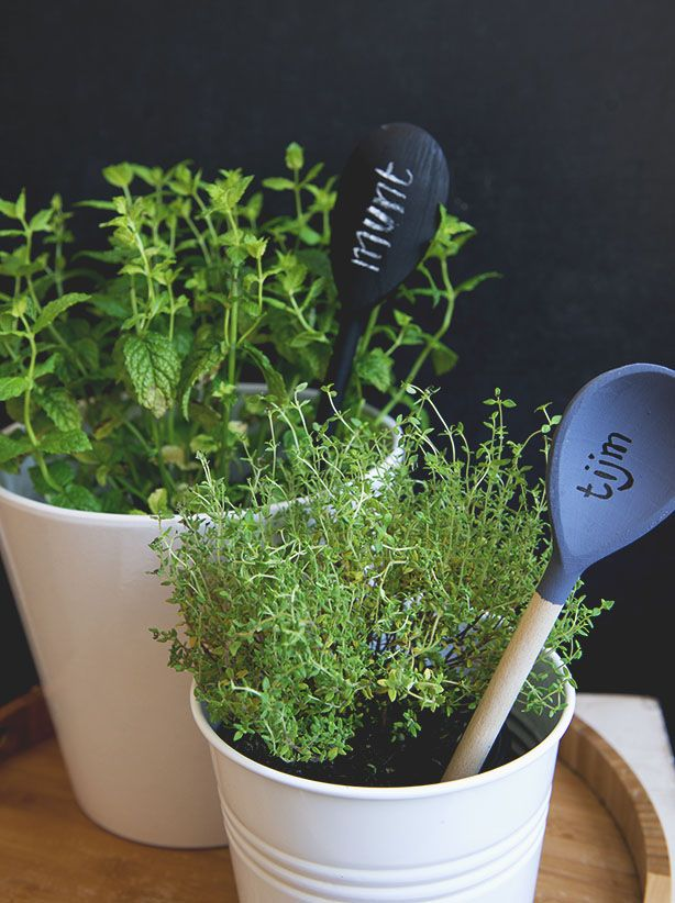 #spoon #herbs #label   Dille & Kamille