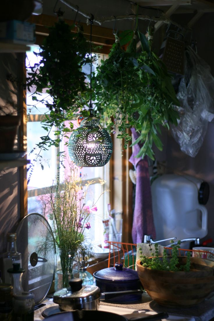 herbs hanging to dry. bohemian cabin kitchen