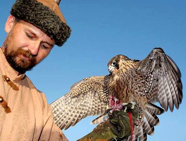 Hungarian traditionalist falconer