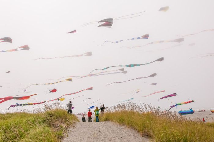 Washington Bucket LIst, from the kite or lavender festivals to camping spots!
