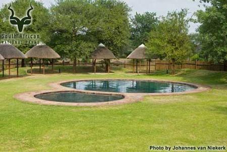 KNP - Satara Camp - Pool