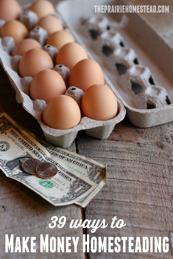 39 ways to make extra money while homesteading or hobby farming: