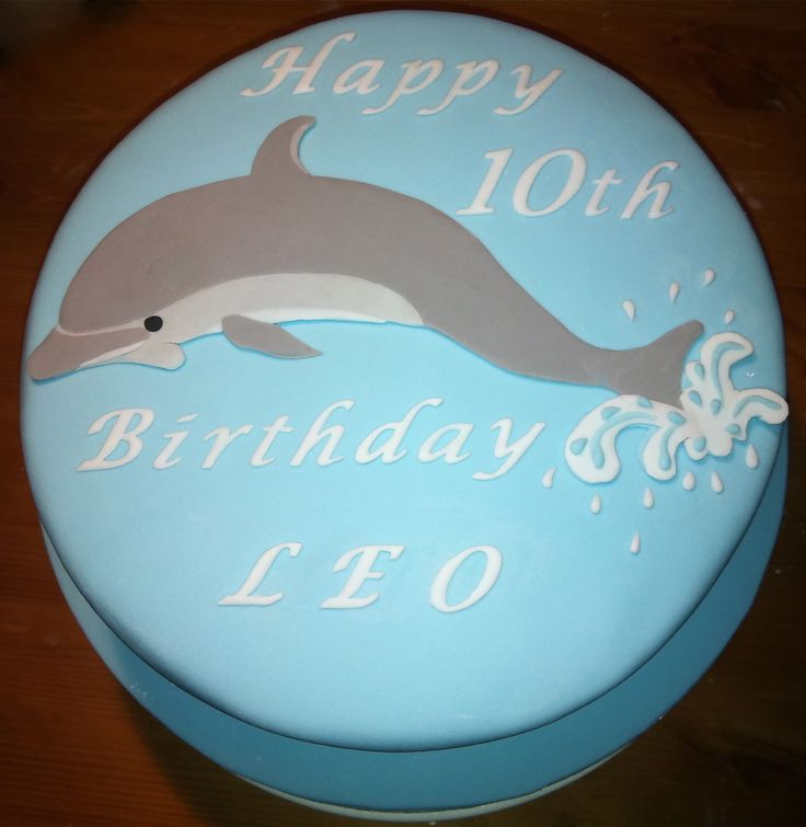 dophin cake | Animal Cake - Dolphin- from £95