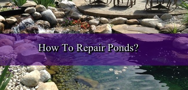 How To Do Pond Repair? - http://www.myhometricks.com/how-to-do-pond-repair/ - #Repairing However carefully you install your pond, it may start to leak at some stage, and repairs will be necessary to maintain the water level. The method you use will depend entirely on the material from which your pond is made. Emptying a Pond You will need to drain your pond before making any...