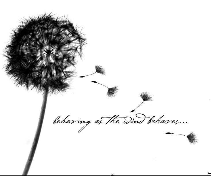 best  dandelion tattoo quote ideas on   simple quote, Natural flower