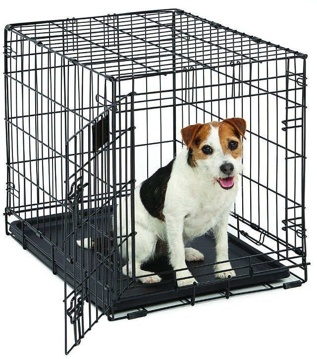 Midwest Life Stages Single-Door Folding Metal Dog Crate $13.99 (amazon.com)