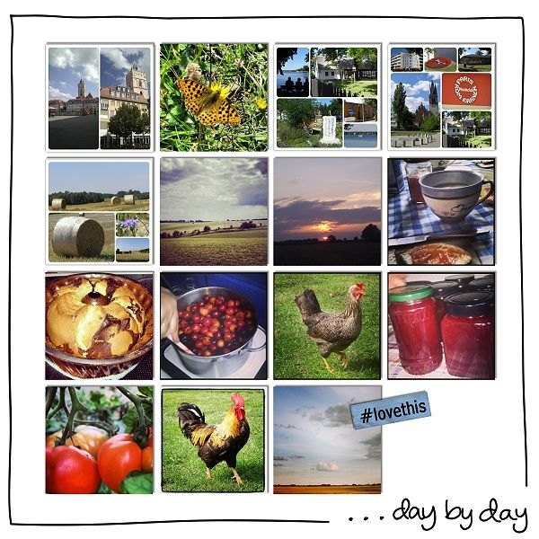 This Year +  Instant  by t for me designs  at Scrap Art Studio    http://www.scrapartstudio.com/shop/index.php?main_page=index&cPath=127_191