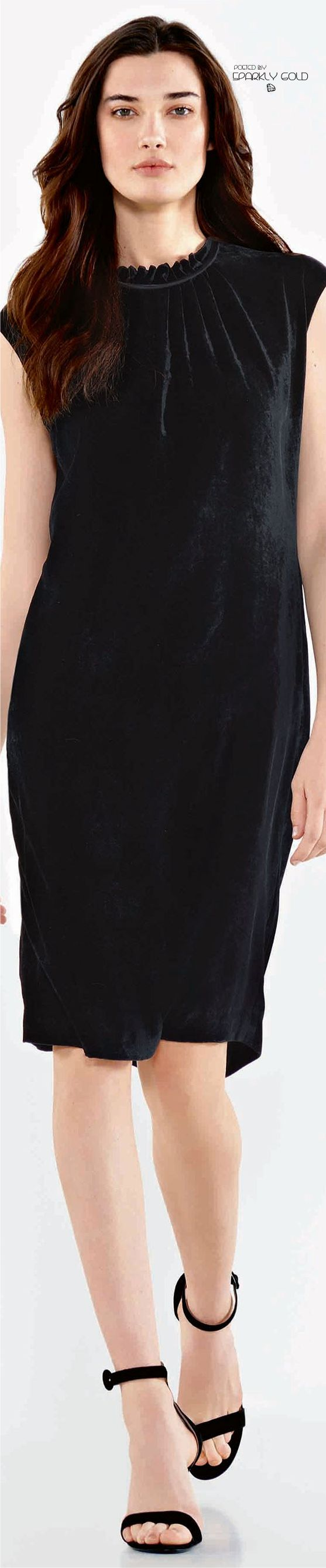 Le petit robe noir 2018