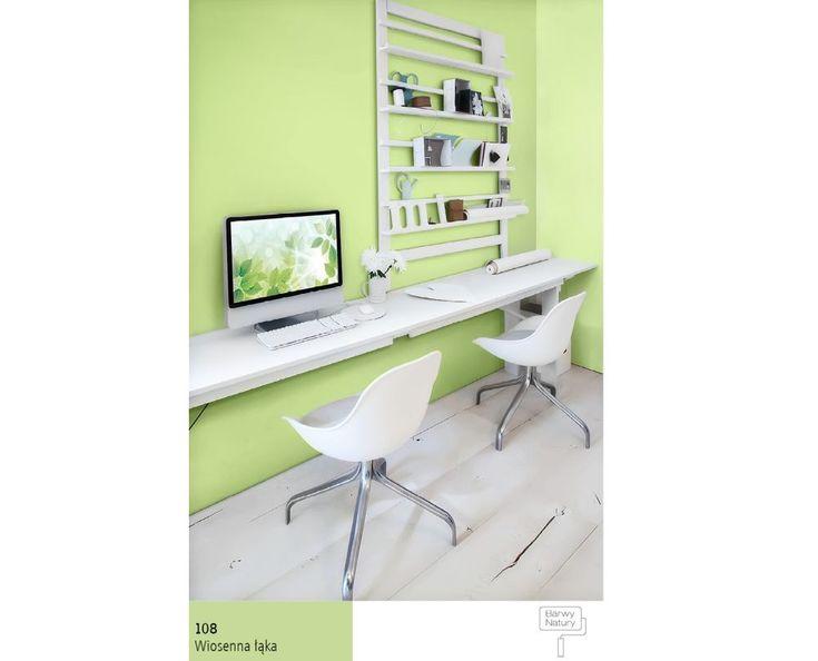 Patrzenie na zieleń zalecane jest wszystkim pracującym przy komputerze – kolor ten sprawia, że oczy odpoczywają.
