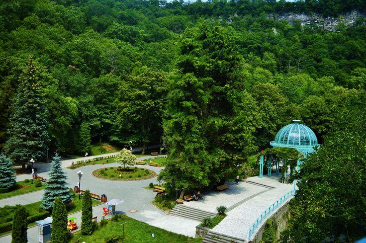 Borjomi Central Park - null