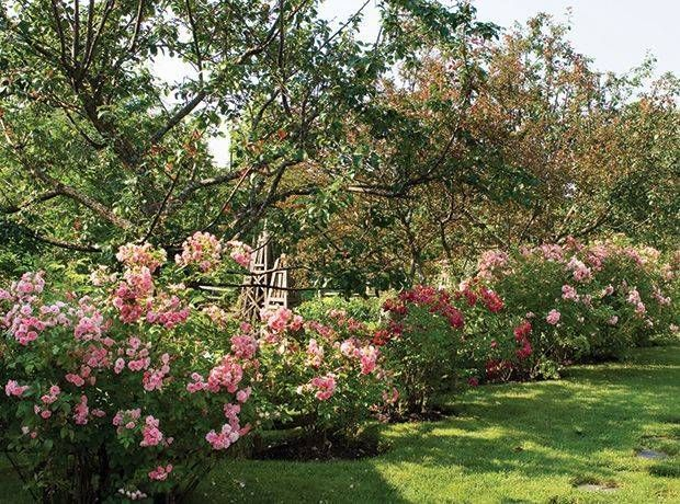 10 Stupefying Garden Landscaping Yeovil Ideas Garden Ideas Landscaping Stupe Gard In 2020 Backyard Garden Design Backyard Garden Landscape Garden Landscaping