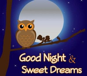 good-night-greetings Holiday Messages, Greetings and Wishes - Messages, Wordings and Gift Ideas